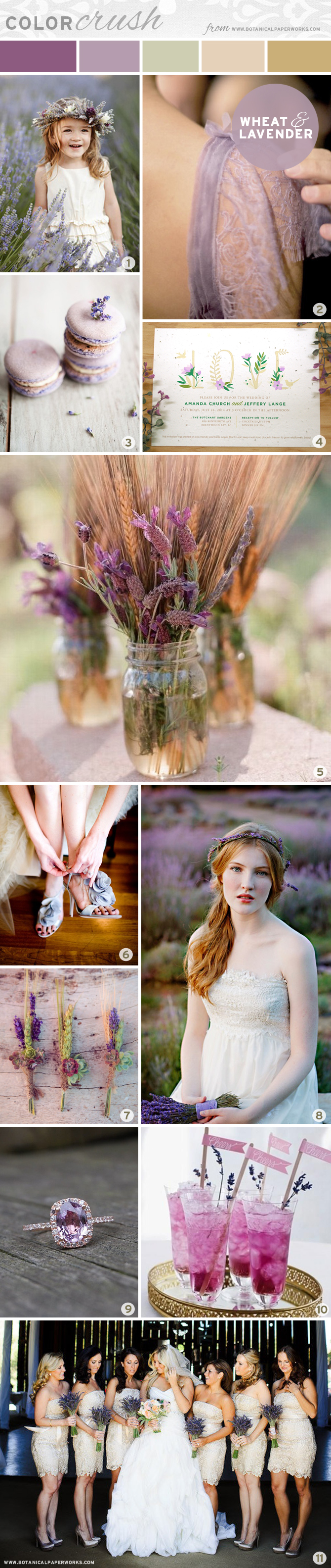 Wheat and Lavender